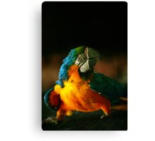 Big green-yellow-blue parrot Canvas Print