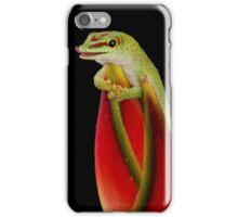Day Gecko iPhone Case/Skin