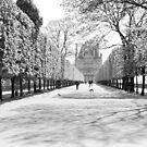 Jardin Des Tuileries by Alex Cassels
