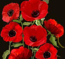 Flanders Poppies by MayWebb