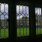 Christ's College --- Looking Through the Leadlight by Larry Davis