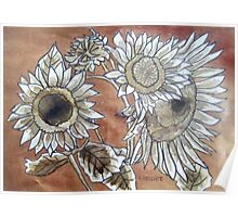 Copper Sunflowers Poster