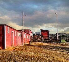 Homestead Barn and Corral by Kay Kempton Raade