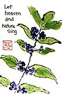 Japanese Beautyberry (Callicarpa japonica) by dosankodebbie