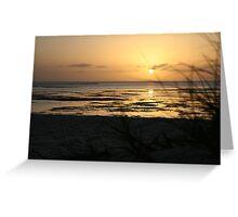 Sunrise at Monkey Mia Greeting Card