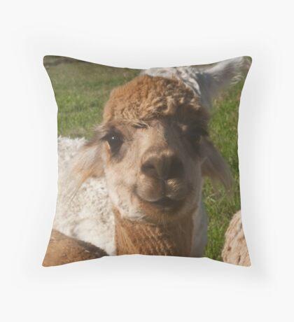 Bright Eyed Smiler Throw Pillow