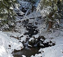 Snowy Creek by DarthIndy