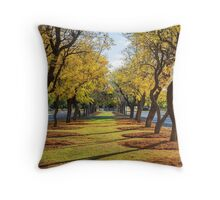 Wentworth Streetscape Throw Pillow