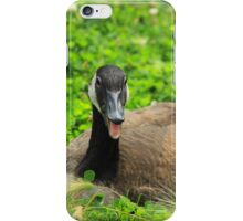 Canada Goose Sitting on Plants iPhone Case/Skin