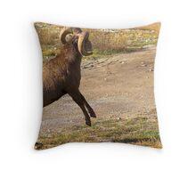 Ram Challenge Throw Pillow
