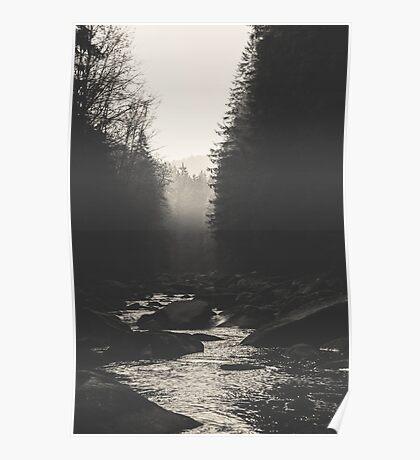 Morning river Poster