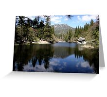 Water mirror - Silent Valley, CA Greeting Card
