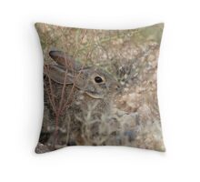 Desert Cottontail ~ A.K.A. Audubon's Cottontail Throw Pillow