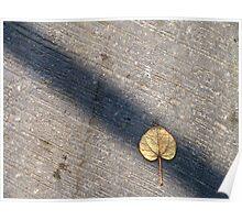 Hidden leaf Poster