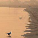 Misty Morning on Busselton Beach by Eve Parry
