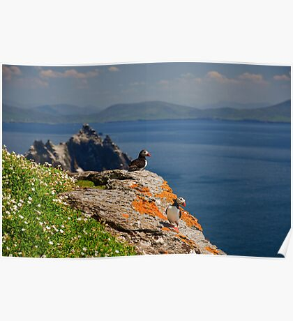 Skellig Island Nature Landscape With Puffin Poster