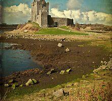 Irish Castle Dunguaire, County Galway, Ireland by upthebanner