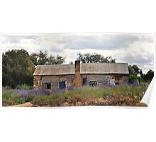 Riverina Bluebell and old Cottage Poster
