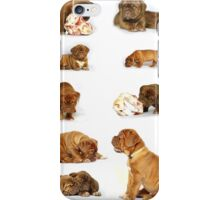 Dog chart iPhone Case/Skin