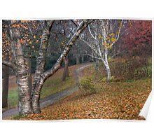 High Park Autumn Morning Poster