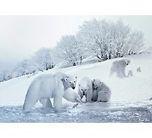 Winter Whimsy Photographic Print