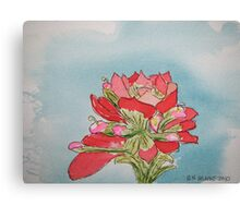 Indian Paintbrush pen and ink Canvas Print
