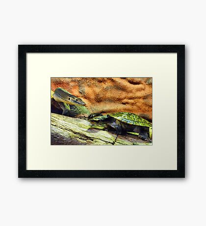 Trying To Sneak Past Are We Framed Print