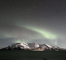 North Light / Aurora Borealis at Kvaløya island by Frank Olsen