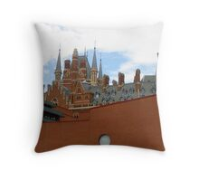 Same Difference Throw Pillow