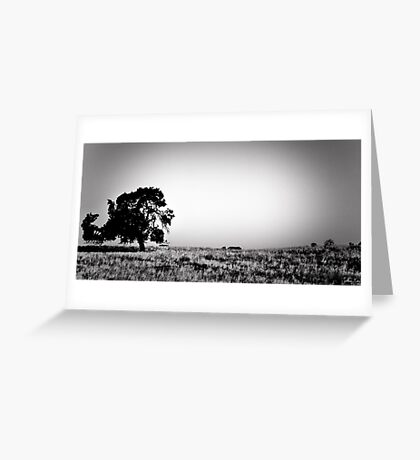 Field Of Empty Dreams Greeting Card
