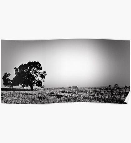 Field Of Empty Dreams Poster