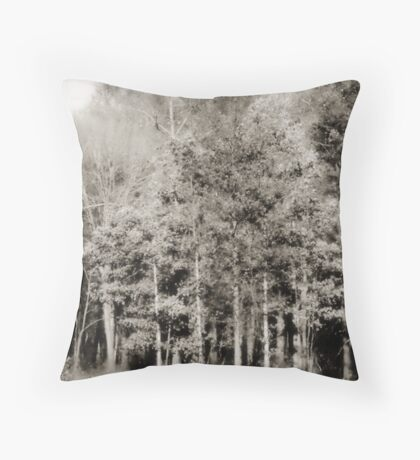 Pastoral Lou Campbell State Nature Preserve Throw Pillow