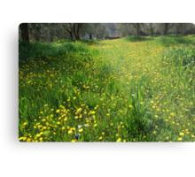 Springtime in Tuscany-Siena Metal Print
