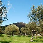Shadow Peak-Trevignano Romano-Italy by Deborah Downes