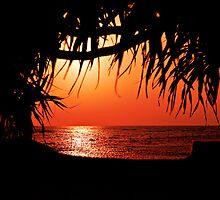 Okinawa Dawn by Dale Frazier