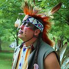 Native American Cherokee 1 by Linda Costello Hinchey