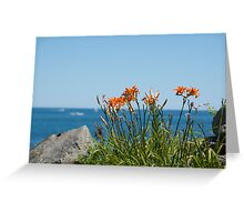 Wild Lillies Greeting Card