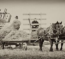 Amish Country by Jerry Schlagheck