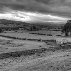 Wensleydale by NSQPhotography