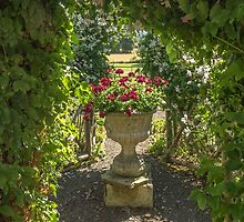 A planter and an arch by Judi Lion