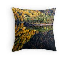 Two autumn forests Throw Pillow