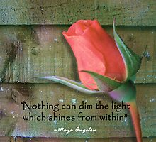 Nothing Can Dim The Light by ninasilver