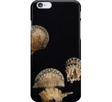 Japanese Jellies iPhone Case/Skin