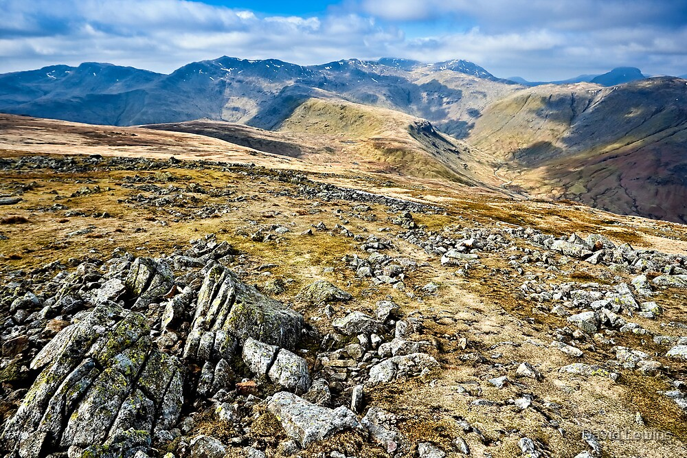 View from High Raise, Lake District National Park. UK by David Lewins