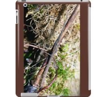 Stick insect Phasme story  1   (c)(t) by Olao-Olavia / Okaio Créations fz 1000 iPad Case/Skin
