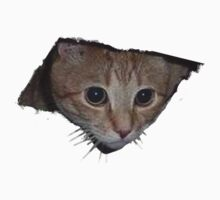 Ceiling Cat by johntheone