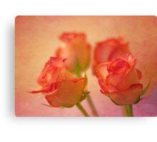 A bokeh of roses Canvas Print