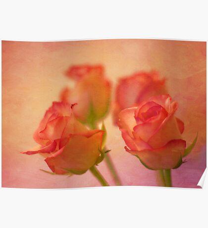 A bokeh of roses Poster