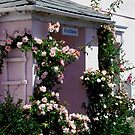Pink Cottage by Charmiene Maxwell-batten