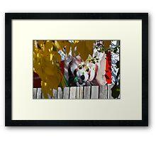 KOOL Neighbor! Framed Print